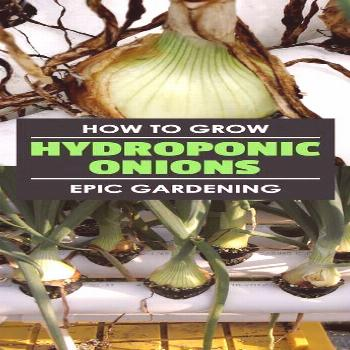 Learn how to grow hydroponic onions in this hydroponic root crop experiment. I break it down
