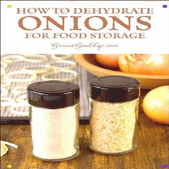 Are Your Onions Getting Soft? It Is Easy To Dehydrate Onions So They Last Longer For Food Storage.