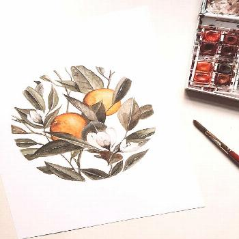 Orange blossom watercolor Orange blossom watercolor The Effective Pictures We Offer You About artis