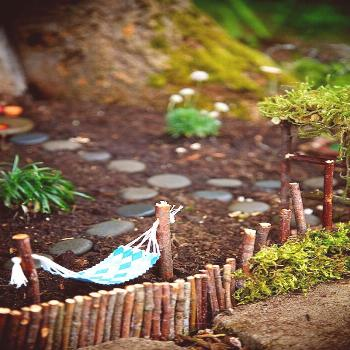 Winners of the Fairy Garden Contest 2014! - The Magic Onions#contest